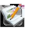 icon recensie
